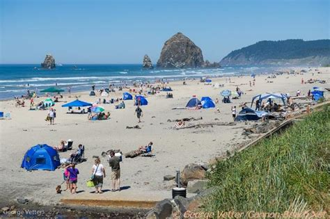 cannon beach news weather updates cannon beach oregon