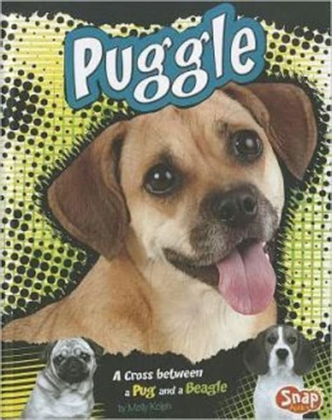 cross between and pug puggle a cross between a pug and a beagle by molly kolpin 9781429676656 hardcover