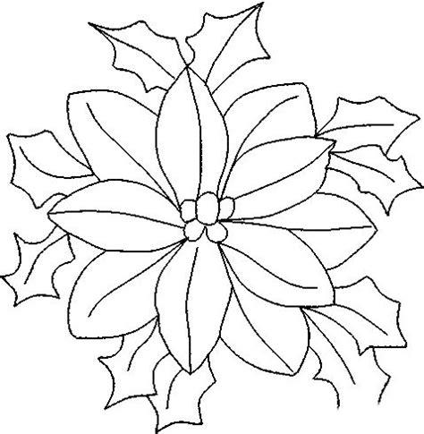 Imagenes De Nochebuenas Navideñas Para Colorear   flor de nochebuena para colorear e imprimir