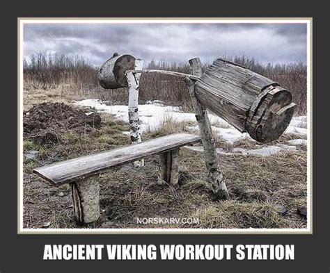 chuck norris weight bench ancient viking workout station norway norwegian bench
