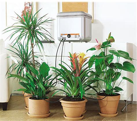 automatic plant watering systems   herb gardening