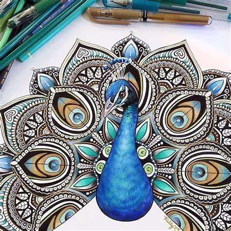 zentangle pattern peacock peacock zentangle art pinterest peacocks mandala