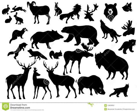 Wild Animal Wall Stickers ansammlung waldtiere stockfotografie bild 12803652
