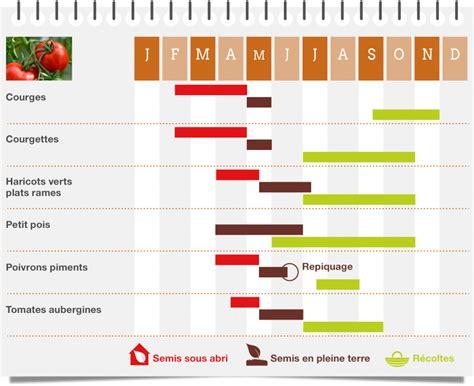 calendrier du jardin potager entretien annuel du potager