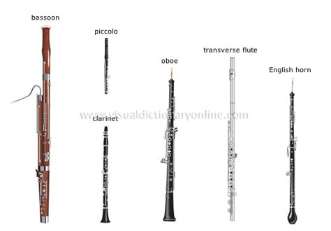 wind section instruments arts architecture music wind instruments 3 image
