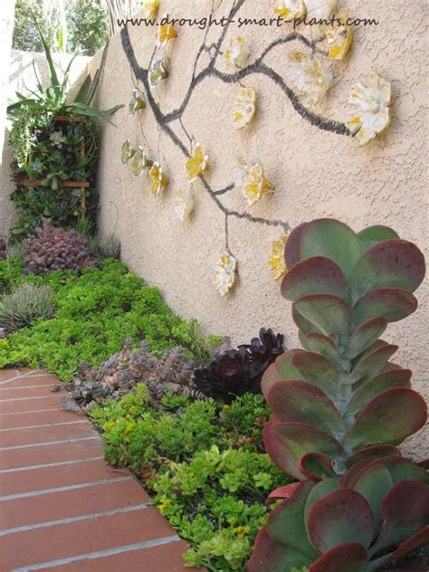 Pocket Garden by Pocket Gardens Like Focal Points In The Xeriscape