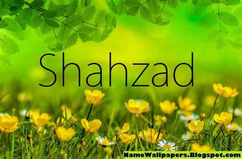 shahzad  wallpaper gallery