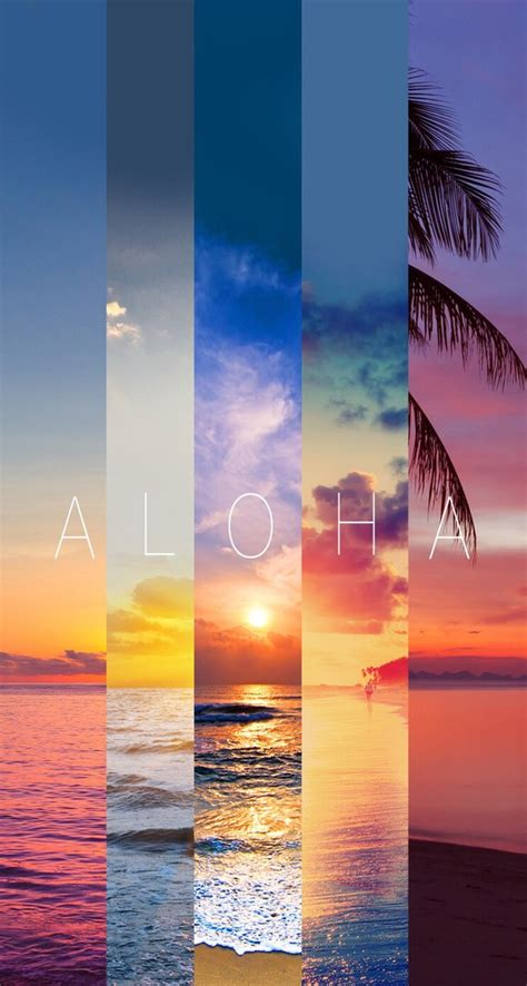 wallpaper tumblr aloha aloha background hawaii ocean summer sun sunset