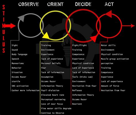 Sage Color mindset and the ooda loop youtube