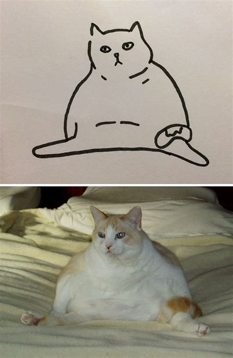 poorly drawn images    real cats