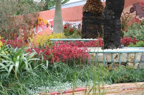 Flemings Gardens by Fleming S And Trailfinder S Australia Garden Shoot