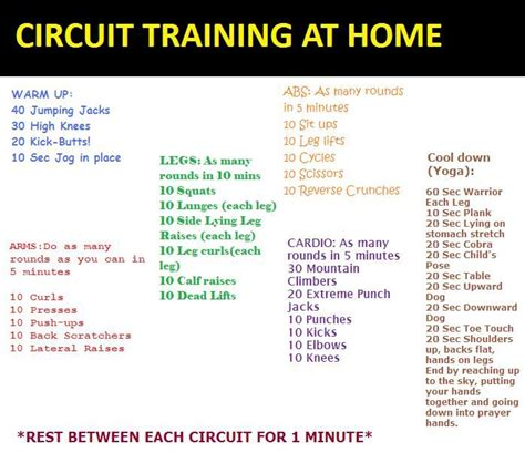 circuit at home made by yours truely