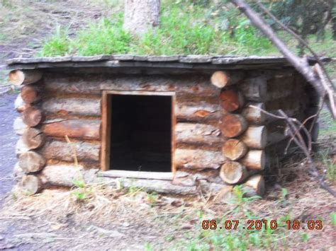 log cabin dog house petsmart 26 best images about log cabin dog house on pinterest expensive dogs pets and country