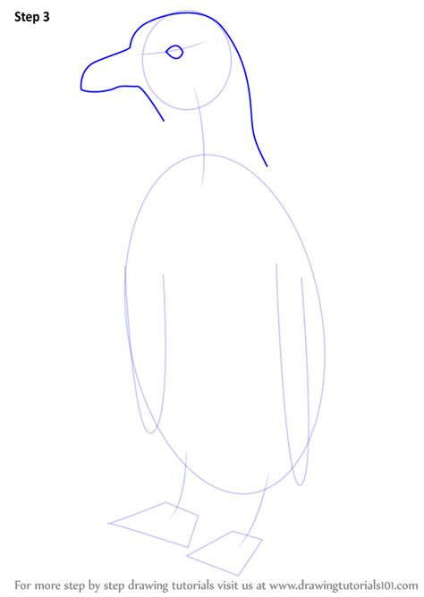 humboldt penguin coloring page step by step how to draw a humboldt penguin