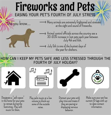Is It Safe To A Fourth C Section by Keep Pets Safe And Less Stressed July 4th I