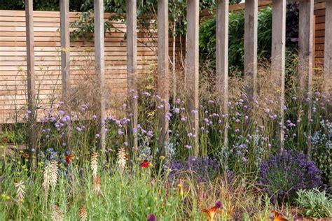 Garden Screen by Garden Screen Solution For Privacy