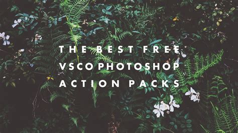 How To Search For On Vsco The Best Free Vsco Photoshop Packs Hipsthetic