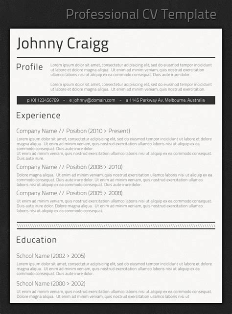 template cv professional jobresumeweb professional resume template