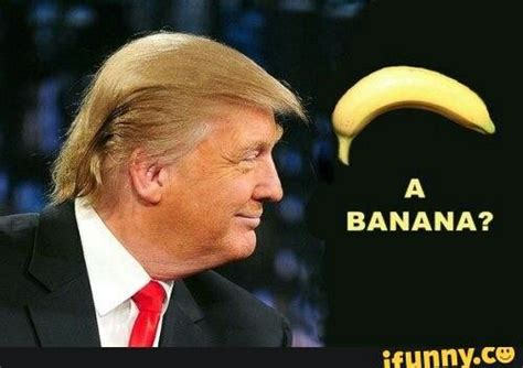 donald trump vs corn donald trump vs a banana stolen looks pinterest