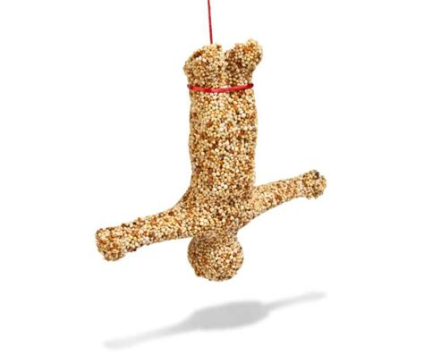 bungee bird feeder iwoot