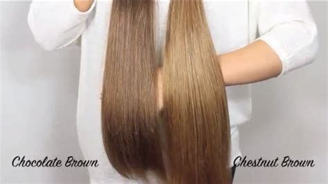 bellami medium brown bellami extensions chocolate brown vs chestnut brown