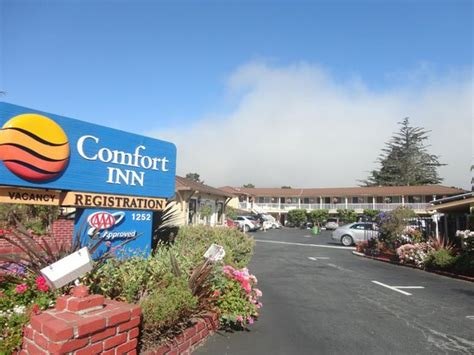 comfort inn monterey california einfahrt zum hotel picture of comfort inn monterey by
