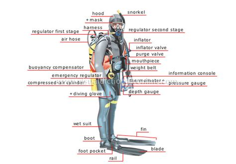 dive equipment scuba self contained underwater breathing apparatus