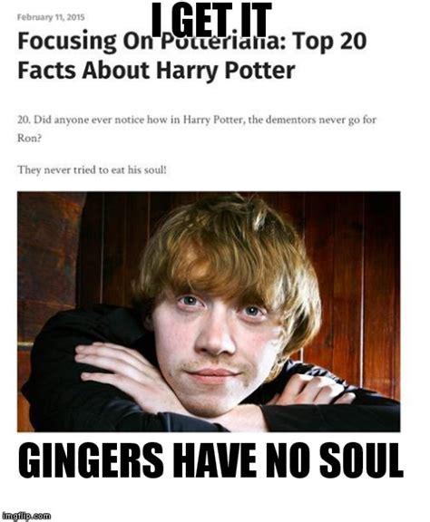Harry Potter Meme Generator - ginger imgflip