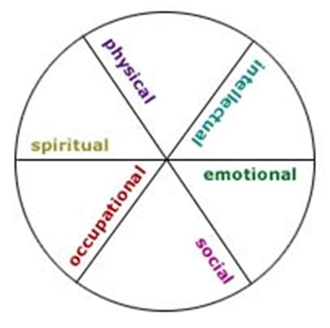 wellness wheel template six dimensions of the wellness wheel