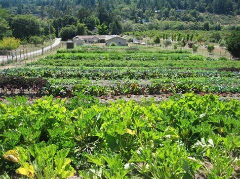 Z Garden by A Libertarian Social Order In The Garden The Zeroth Position