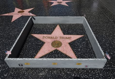 Justin Bieber Wall Stickers suspect arrested in vandalism of donald trump s hollywood