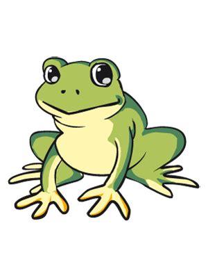 libro una rana a frog dibujos de animales para colorear y pintar p 225 gina 4 todopap 225 s