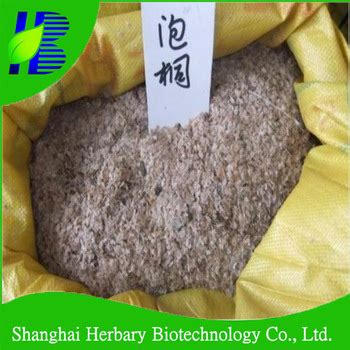 x seeds for sale barren resistant hybrid 9501 paulownia seeds for sale