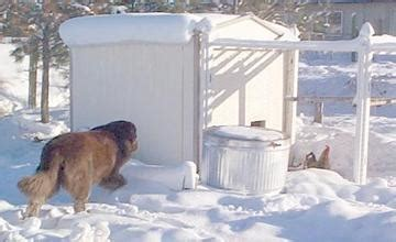 winter proof dog house photo gallery winter chicken house