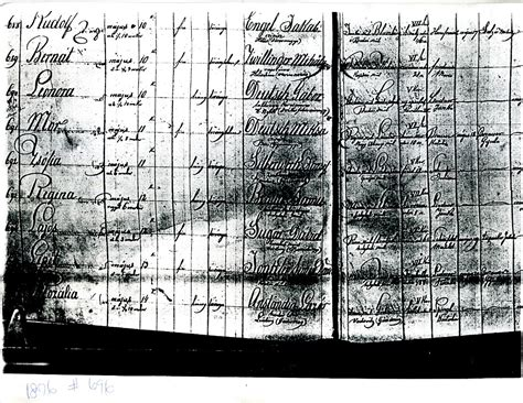 How To Find Birth Records In Poland Records In Galacia Wadowice And Lemberg