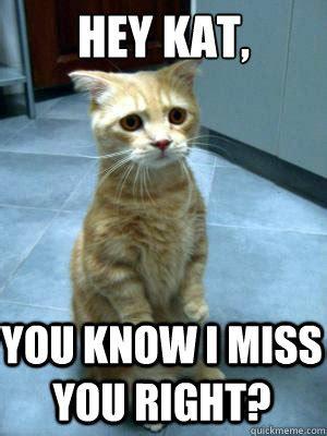 Kat Meme - hey kat you know i miss you right sad cat blog quickmeme