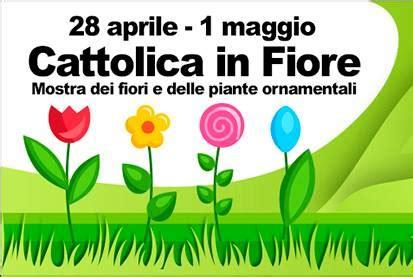 cattolica in fiore cattolica in fiore a cattolica rn 2018 emilia romagna