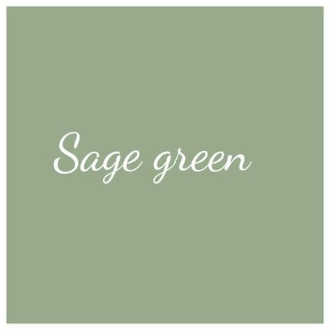 sage color best 25 sage green paint ideas on pinterest