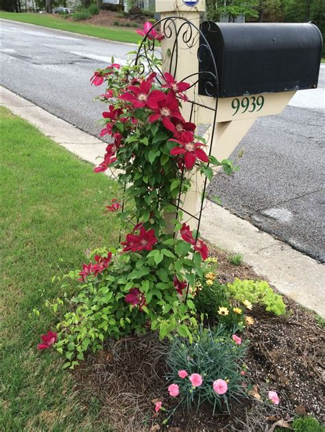 mailbox flower bed the 25 best mailbox landscaping ideas on pinterest