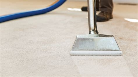 professional couch cleaning prices 4 things you should never use to clean carpet angie s list