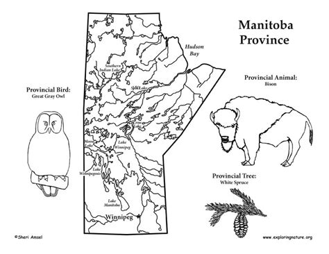 coloring page canada map canadian province manitoba
