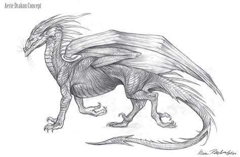 coloring pages of dragons realistic free coloring pages of dragons realistic