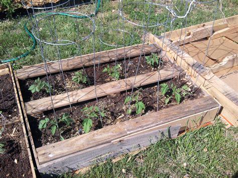 purposed pallets  raised bed gardens