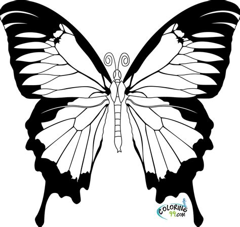 coloring pages for butterfly butterfly coloring pages team colors