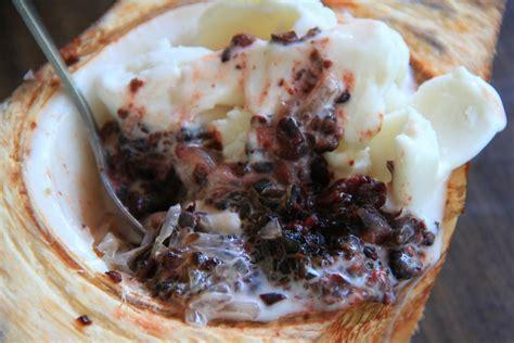 nikmatnya sajian es krim  batok kelapa muda situs