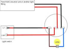 light switch loop wiring diagram images