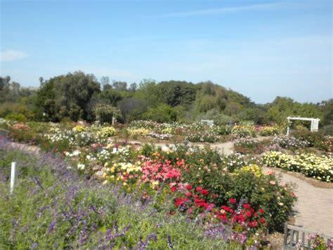 Botanical Garden Palos Verdes Koi Pond Picture Of South Coast Botanic Garden Palos Verdes Estates Tripadvisor