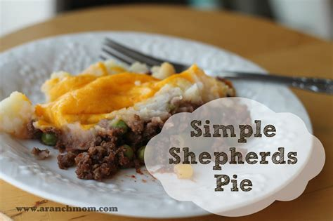 cottage pie basic recipe basic shepherds pie recipe