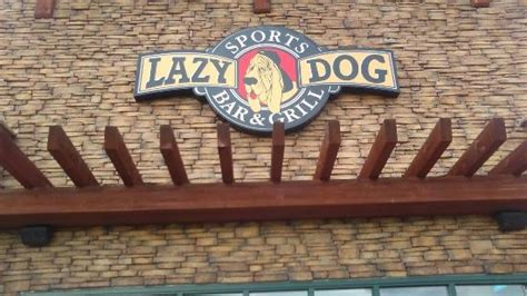 lazy erie the bbq the lazy bar and grill erie traveller reviews tripadvisor