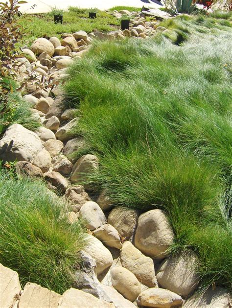 dry river bed dry river bed hill landscaping pinterest beds and rivers